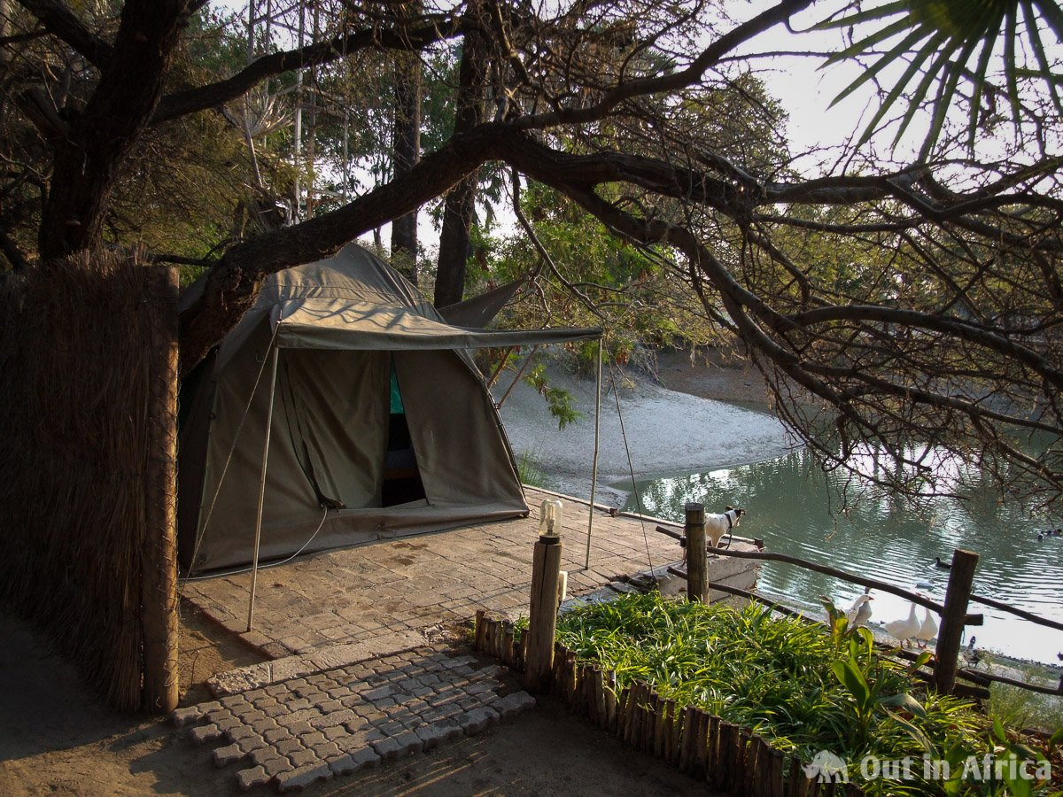 Tent at Ondangwa Tented Rest Camp