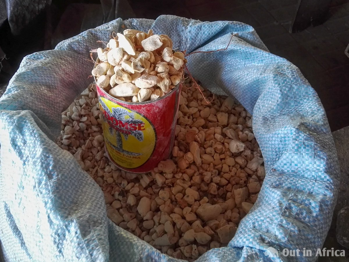 Dried pulp of Baobab fruit